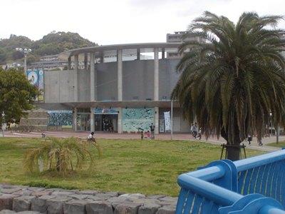 長崎ペンギン水族館 (45)
