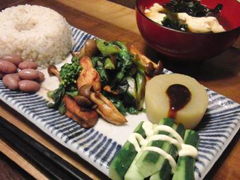 Apr05_鶏と野菜の味噌炒め