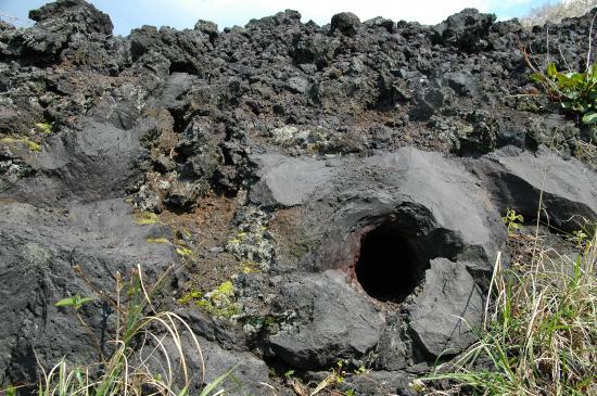 C6溶岩流末端の溶岩樹型 立木が溶岩流にのみこまれ炭化し幹の形がそのまま空洞となったもの