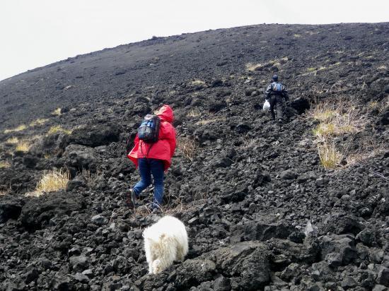 山頂へ 準会員のtyomoも懸命についていきます