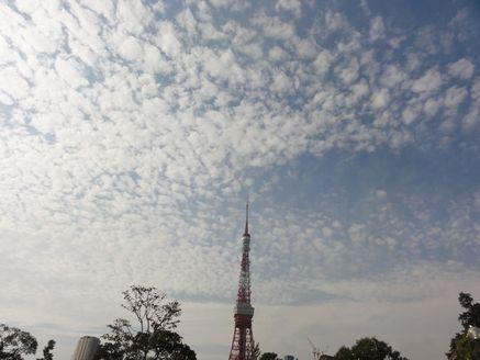 うろこ雲とタワー