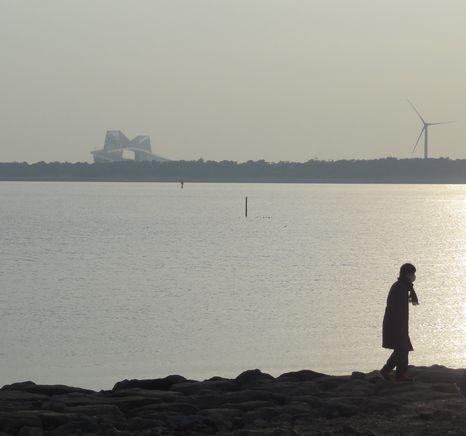 臨海公園から
