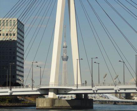 中央大橋越しのスカイツリー