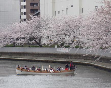 東京海洋大学漕艇部