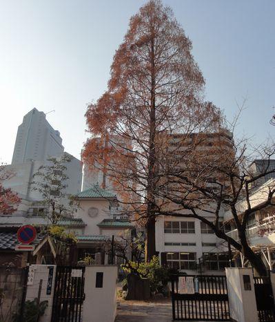 西応寺正門