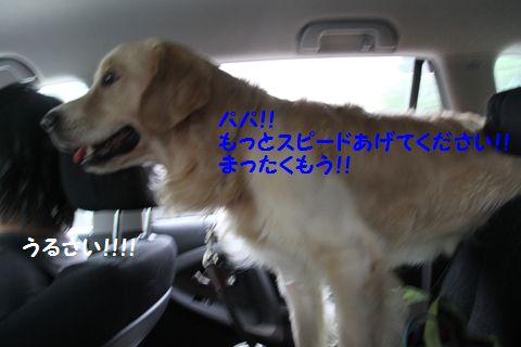 20110901_02_R.jpg