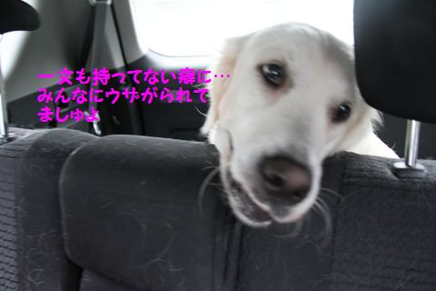 20110901_03_R.jpg