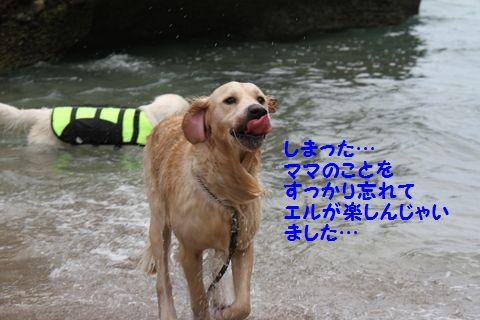 20110901_07_R.jpg