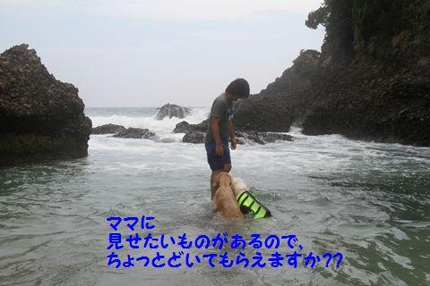 20110901_08_R.jpg