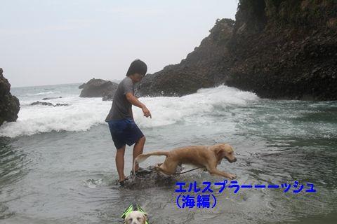 20110901_10_R.jpg