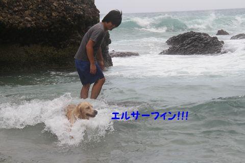 20110901_12_R.jpg