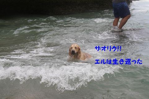 20110901_14_R.jpg