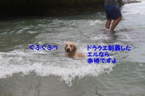 20110901_15_R.jpg
