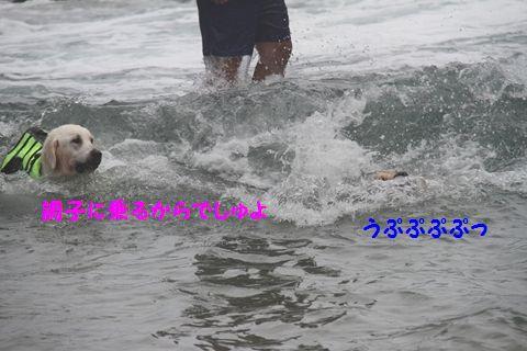 20110901_18_R.jpg