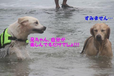 20110901_22_R.jpg