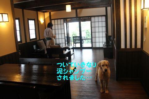 20110902_01.jpg