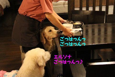 20110902_04.jpg