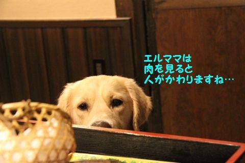 20110902_14.jpg