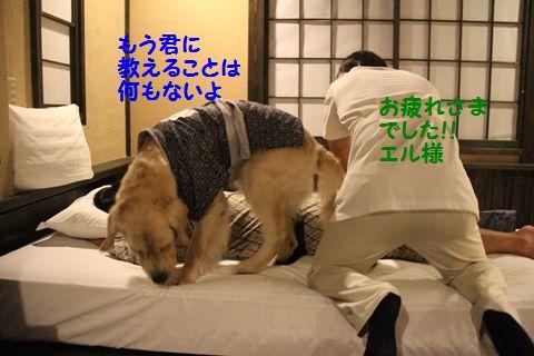 20110902_27.jpg