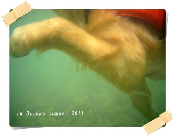 水中から3