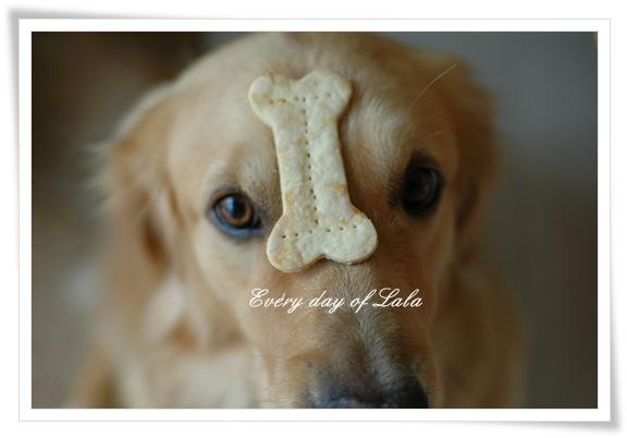 クッキーのせ