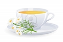 image  k  -tea-with-camomile-flowers-vector-illustration