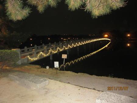 大濠公園イルミ2