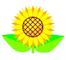 スクリーンショット(2011-06-24 11.46.54)