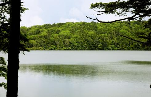 白駒池2湖面
