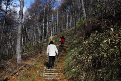 三味線滝032