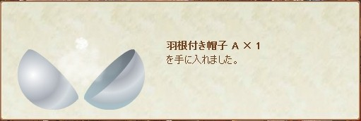 1回目羽付帽子