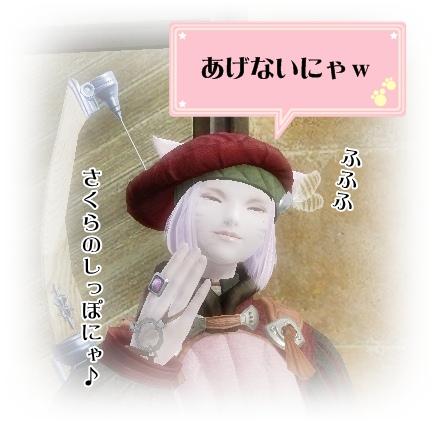 5_20120205210129.jpg