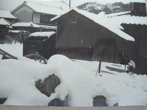貞光の積雪。