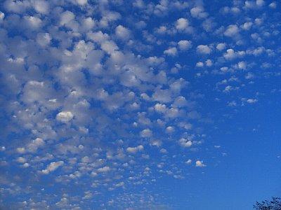 秋晴れ うろこ雲