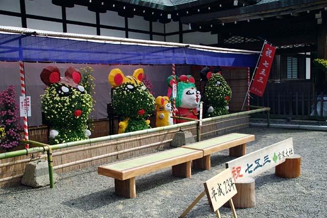 西日本菊花展(75352 byte)