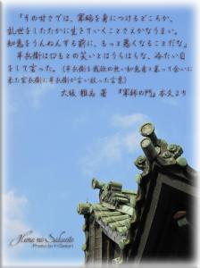 611-1.jpg