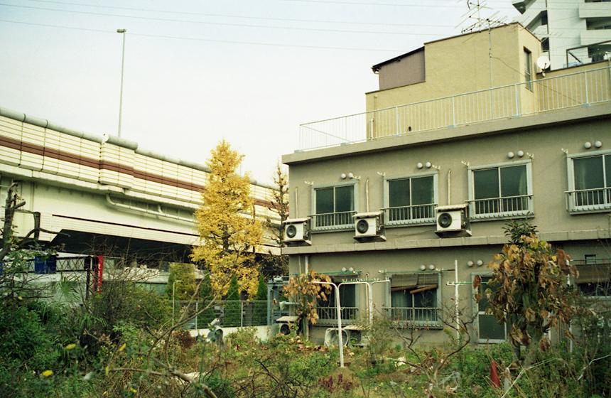 2007122101.jpg