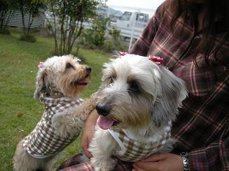 2009.10.25マシュ&ルーシー