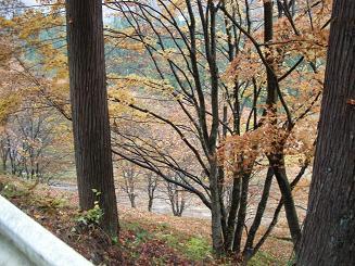 2009.11.1高山道の駅巡り 040