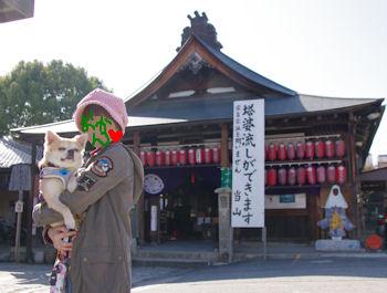 komugiokan_0226_002