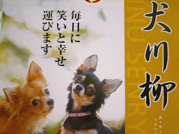 komugiokan_0306_005