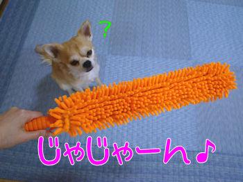 komugiokan_0328_001