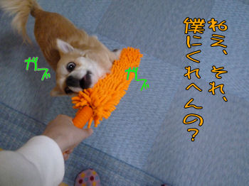 komugiokan_0328_003