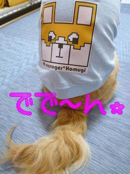 komugiokan_0406_001