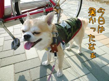 komugiokan_0427_000