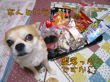 komugiokan_0501_004