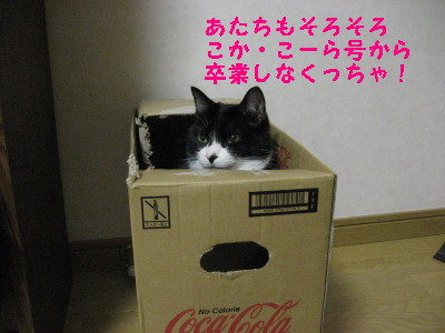 IMG_5927.jpg
