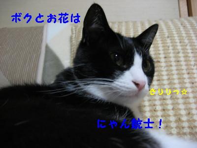 IMG_6490_20091014093105.jpg