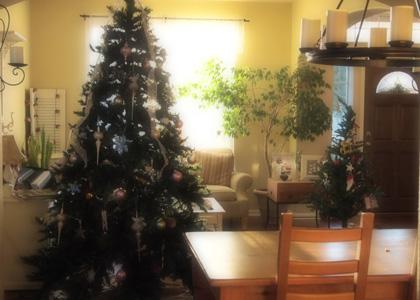 見納めクリスマスツリー