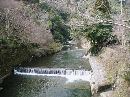 24-3-19 嵐山 清滝 005